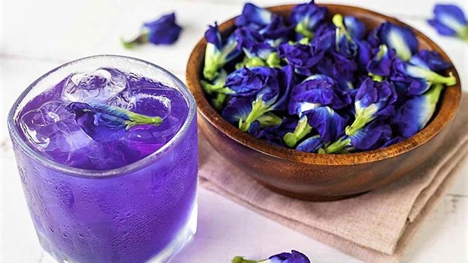 пурпурный чай чем полезен для здоровья и фигуры