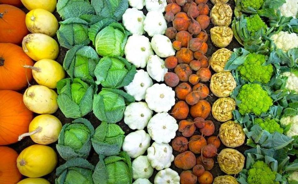 щелочные продукты питания чем полезны для организма