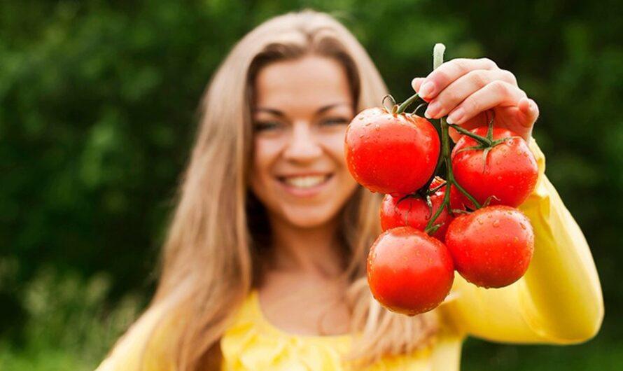 Почему нельзя есть помидоры на ночь при похудении: польза и вред
