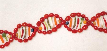ДНК-диета ДНК-похудение